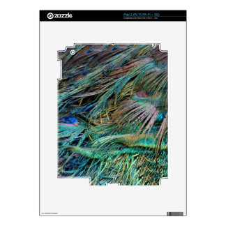 Peacock Feathers Rainbow Colors iPad 2 Decal