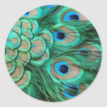 PEACOCK FEATHERS ROUND STICKERS
