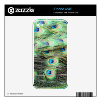Peacock Feathers iPhone 4 Skin