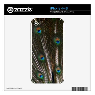 Peacock Feathers Skin For The iPhone 4
