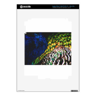 Peacock Feathers Skins For iPad 3