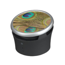 Peacock Feathers Speaker