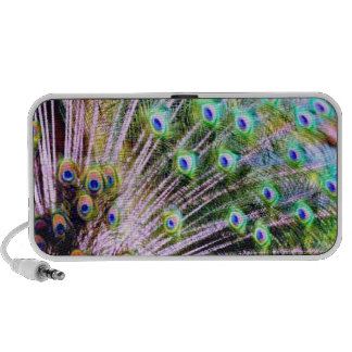 Peacock Feathers Travelling Speakers
