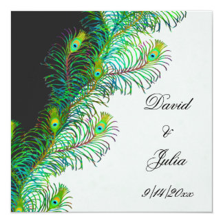 Peacock Feathers Square Wedding Invitation