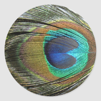 Peacock Feathers Round Sticker