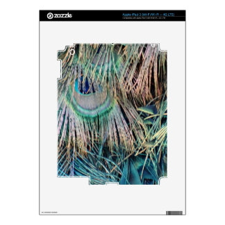 Peacock Feathers Tan Green And blue iPad 3 Skins