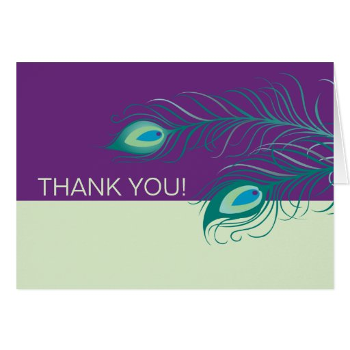 Peacock Feathers Thank You Note Card