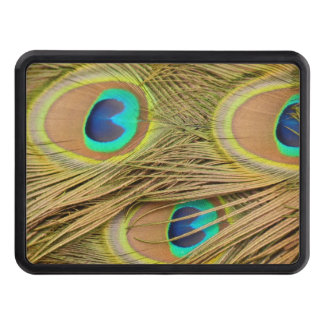 Peacock Feathers Tow Hitch Cover
