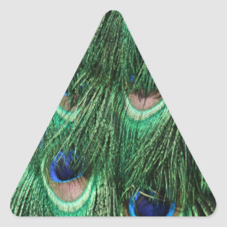 Peacock Feathers Triangle Sticker