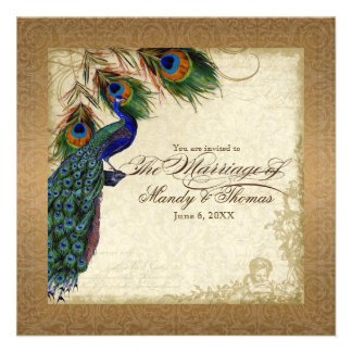 Peacock & Feathers Vintage Gold Look Damask  Swirl Announcement