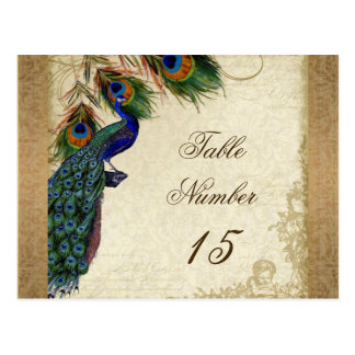 Peacock Feathers Vintage Gold Look Damask Swirl Post Cards