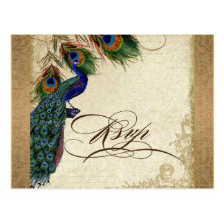 Peacock Feathers Vintage Gold Look Damask Swirl Post Card