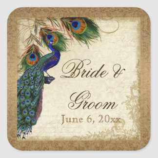 Peacock Feathers Vintage Gold Look Damask Swirl Square Stickers