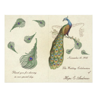 Peacock Feathers Wedding Program
