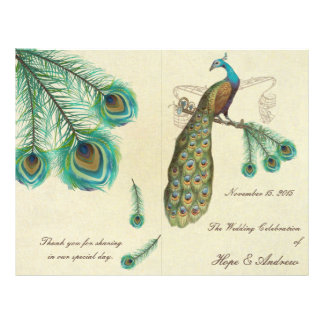 Peacock Feathers Wedding Program 2
