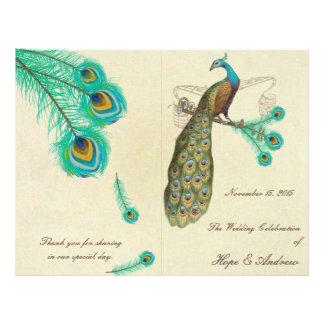 Peacock Feathers Wedding Program 2 Flyer Design