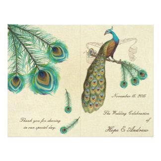 Peacock Feathers Wedding Program 2 Custom Flyer