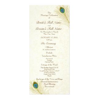 Peacock Feathers Wedding Program Rack Card Template