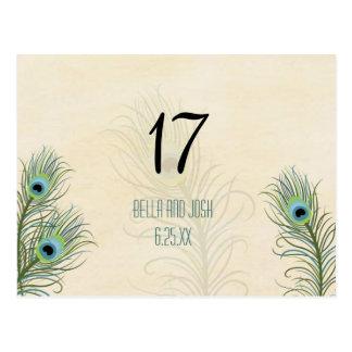 Peacock Feathers Wedding Table Card Postc Postcard