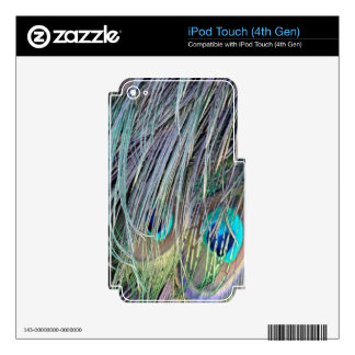 Peacock Feathers Wild Colors Decal For iPod Touch 4G