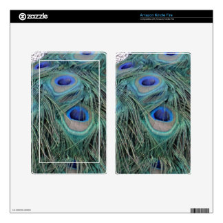 Peacock Feathers With Eye Spots Decals For Kindle Fire