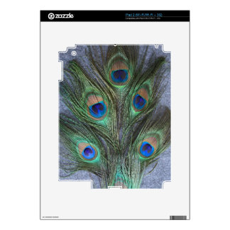 Peacock Feathers with Grey Background Decal For iPad 2