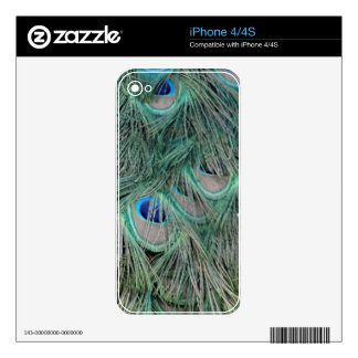 Peacock Feathers With Pick Boo Eyes iPhone 4S Decals