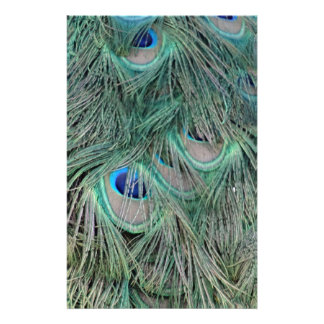 Peacock Feathers With Pick Boo Eyes Stationery