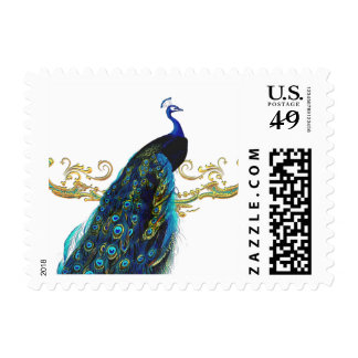 Peacock & Filigree Postage Stamp