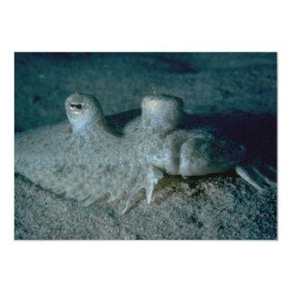 Peacock flounder custom invite