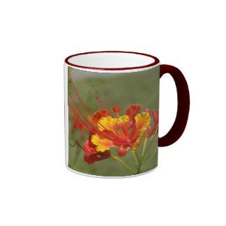 Peacock Flower Ringer Coffee Mug