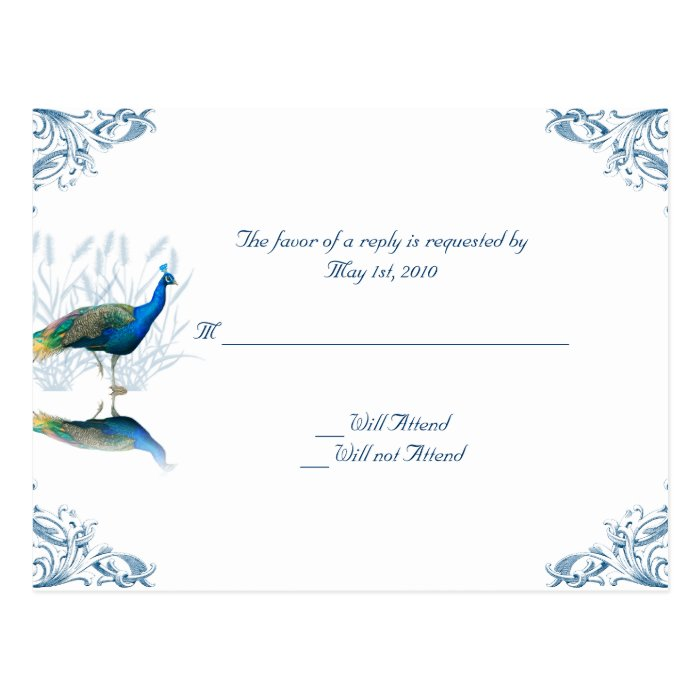 Peacock Garden in Blue and White Postcard