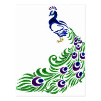 Peacock Gifts Postcard