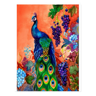 Peacock Grape Artwork Postcard