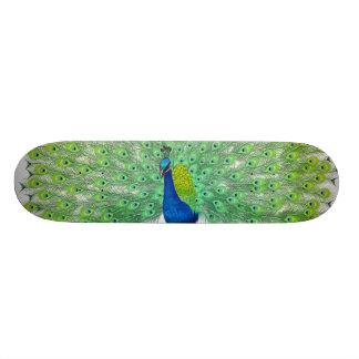 Peacock Great Look Skateboard