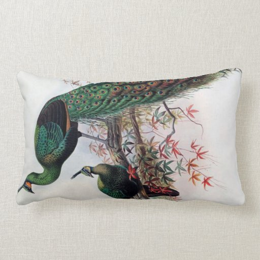 Peacock,green peafowl pavo muticus 1872 ... pillow
