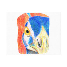 Peacock head colored pencil drawing sketch canvas print
