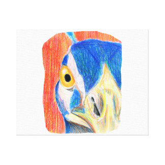 Peacock head colored pencil drawing sketch canvas print