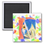 Peacock head colored pencil drawing sketch magnets