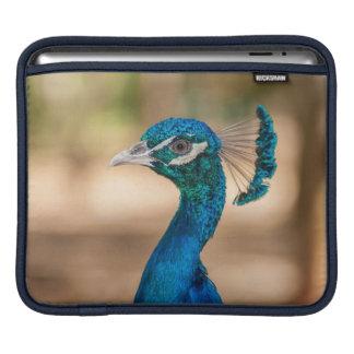 Peacock Head iPad Sleeve