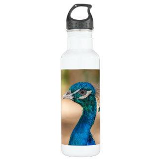 Peacock Head Stainless Steel Water Bottle