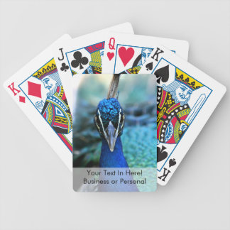Peacock head straight on picture bicycle playing cards