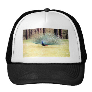 Peacock in Brushstrokes Trucker Hat