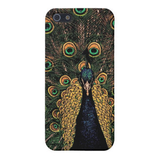 Peacock in Slightly Subdued Colors iPhone SE/5/5s Case