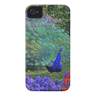 Peacock in Spring Flowers iPhone 4 Case-Mate Case