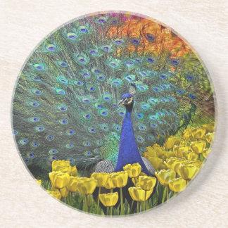 Peacock in Spring Garden 1 Coaster