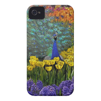 Peacock in Tulips iPhone 4 Cover