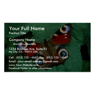 Peacock, Inachis io Double-Sided Standard Business Cards (Pack Of 100)