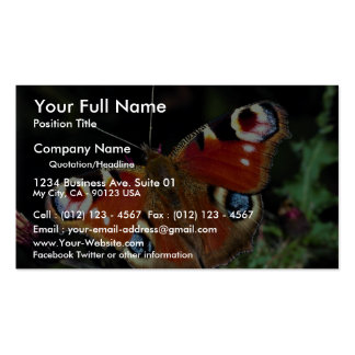 Peacock, Inachis io, Dyfed, U.K. Double-Sided Standard Business Cards (Pack Of 100)
