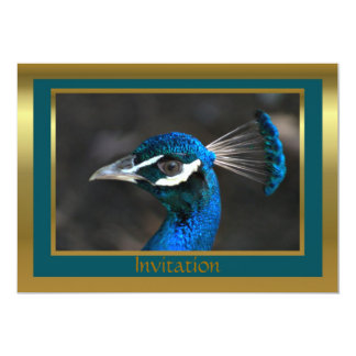 Peacock Invitation for any event or occscasion